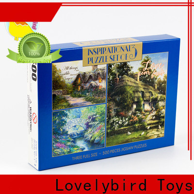 Lovelybird Toys puzzle 500 toy for adult