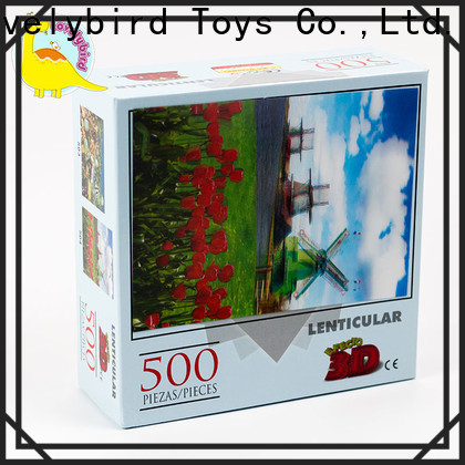 Lovelybird Toys 500 jigsaw puzzles toy for kids