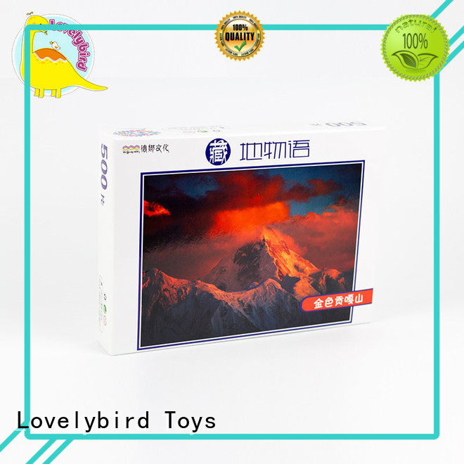 Hot 1000pc  100pceducational finished Lovelybird Toys Brand