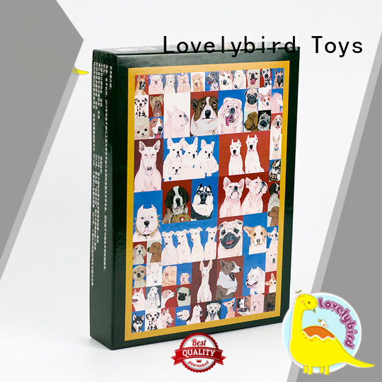 Lovelybird Toys functional wooden puzzles for sale