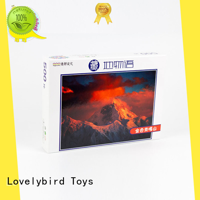 Lovelybird Toys functional wooden jigsaw puzzles with adult
