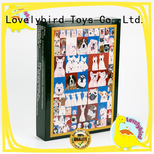 Educational Wooden Puzzle for Adult