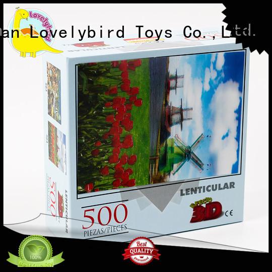 500pcround toy Lovelybird Toys Brand
